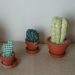 Thimbnail Kaktus 75x75 - Pixie Mütze stricken DIY