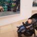 mkim1blog1 75x75 - Mit Kleinkind nach Italien - 9 kleine Tipps für eine gute Reise
