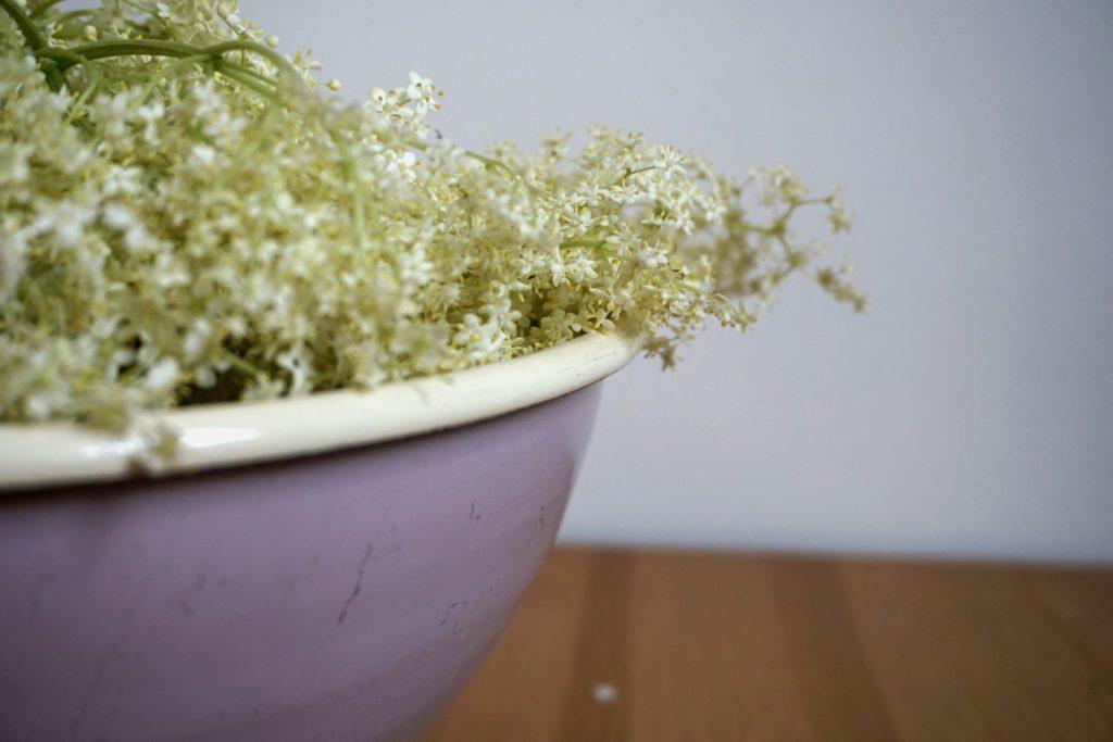 DSC03358 1024x683 - Holunderblütensirup selber machen - Ein Rezept aus der Zero Waste Küche